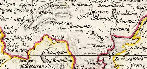 Detail from Weiland map of Ireland, 1853.